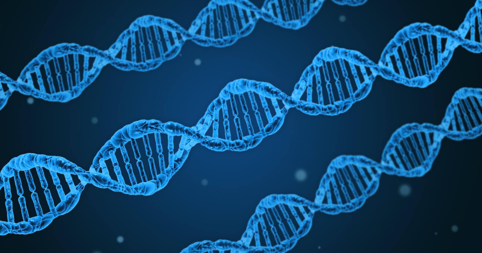 DNA-Stränge zur Versinnbildlichung der genetischen Ursachen von Prostatakrebs